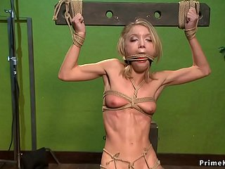Sustenance blonde is anal toyed here hogtie